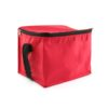 BGCL002 – Insulated Cooler Bag