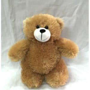 LFSI013 – Standing Bear