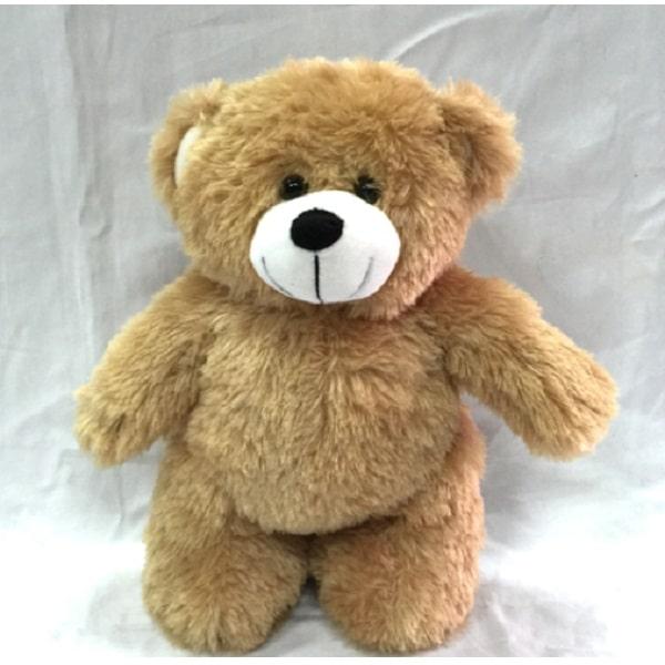 LFSI014 – Standing Bear
