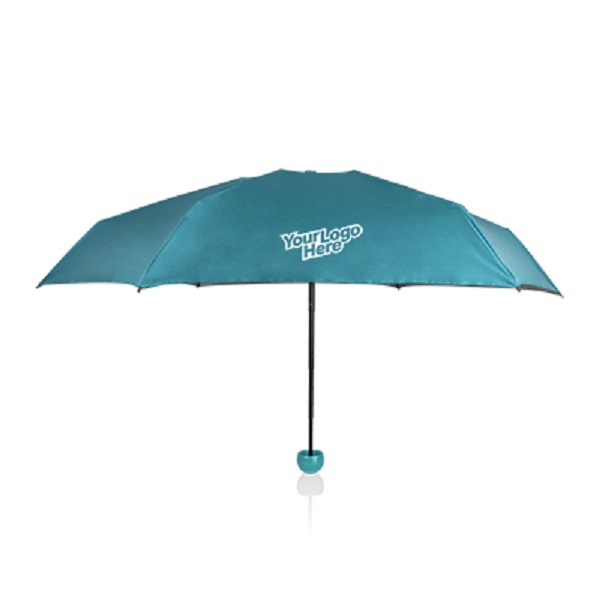 Door gift umbrella